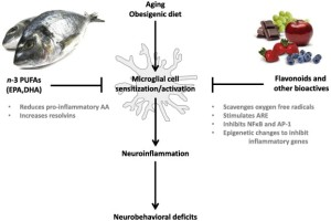 food microglia