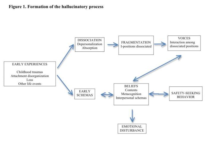formation of hallucinations