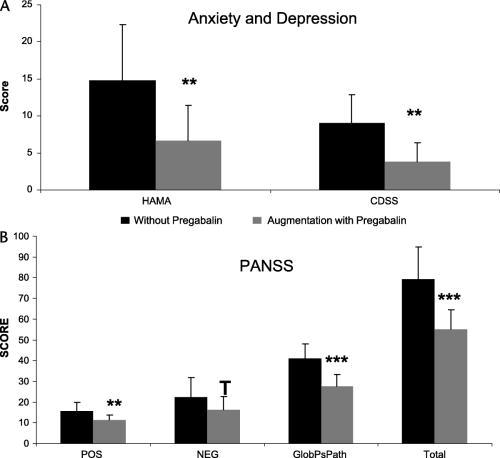 Augmentation with pregabalin in schizophrenia